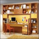 Computer furnishings